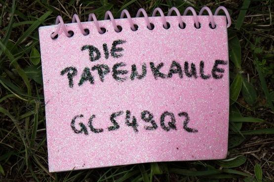 Das Glitzerlogbuch an der Papenkaule