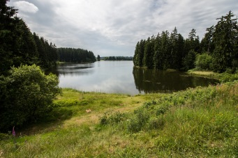 Ziegenberger Teich