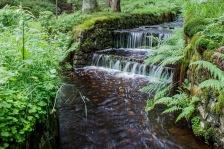 Kleine Wasserfälle am Wegesrand