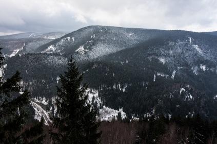 Blick in den Harz
