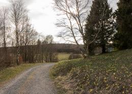 Auf dem Weg ins Perlenbachtal