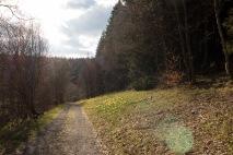Im Perlenbachtal