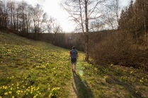 Der Wanderpal im Perlenbachtal