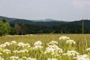 Panorama auf die Eifel